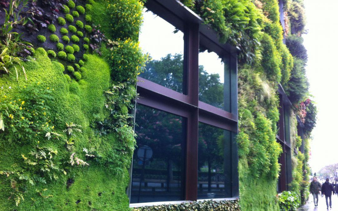 Il verde verticale