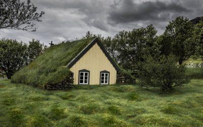 Il tetto verde
